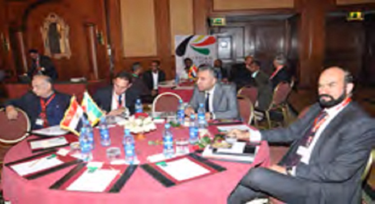ECG in the Ethio-Egyptian Business Forum, Addis Ababa