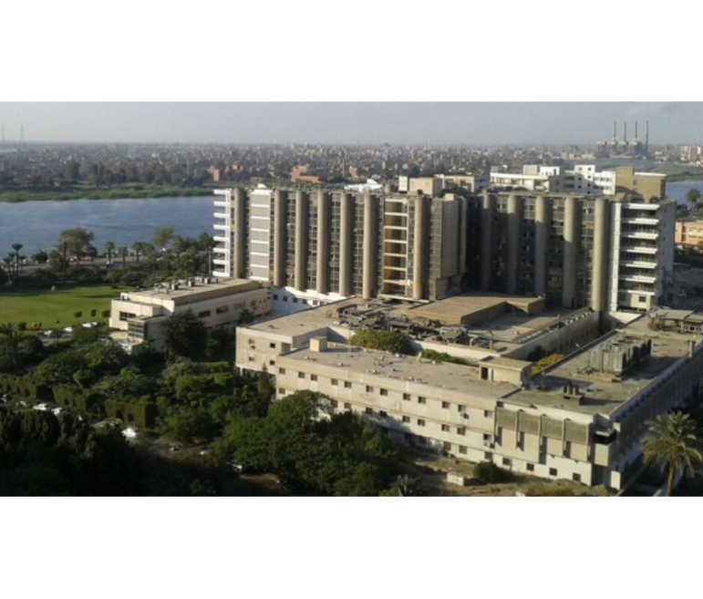 Nasser Institute Hospital – C Tower
